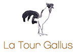 LOGO LA TOUR GALLUS